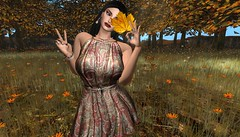 Autumn leaf (Shylah Oceanlane) Tags: autumn leaf avatar secondlife sl nature