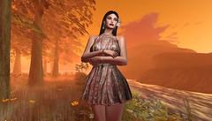 Orangeness (Shylah Oceanlane) Tags: orange autumn avatar slavatar slsecondlife nature