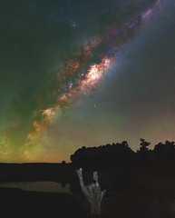 Milky Way at Harvey Dam, Western Australia (inefekt69) Tags: harvey dam western australia great rift panorama stitched ms ice landscape wide clouds astrophotography astronomy stars galaxy milky way galactic core space night photography nikon dslr long exposure perth southern hemisphere cosmos cosmology outdoor sky water trees dead tree 50mm mosaic ioptron skytracker hoyaredintensifier filter d5500