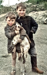 Fun with the lamb (theirhistory) Tags: child children kid boy animal jacket coat trousers wellies rubberboots sandals
