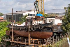 WÜMME (maerskman) Tags: wuemme tug ship boat shipyard hohentorshafen bremen port d500 trappmann