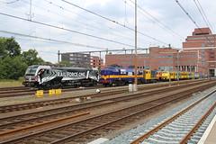 RFO 193 623 + RXP 1251 + BSH 2454 + Mat '64 904 te Amersfoort 16 augusuts 2019 (Remco van den Bosch 72) Tags: rfo railforceone 193623 rxp railexperts 1251 bsh 2454 mat64 planv 904 stichtingmat64 eisenbahn electrischelocomotief eloc elok railway rails railwaystation reizigerstrein trein train transport treinspotten trainspotting track treinstel spoor spoorwegen station siemens bahn bahnhof netherlands nederland locomotief locomotive losseloc passengertrain passagiers publictransport stationamersfoort amersfoort vectron werkspoor x4e623