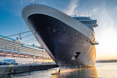 MS Eurodam...docked out at  86,700 tons! (SpyderMarley) Tags: dreamy majestic vacation holiday tourism cruise docked hollandamericaline mseurodam harbour water hull towering britishcolumbia eurodam august2019 boats ogdenpoint vancouverisland victoria cruiseship nautical summer romantic