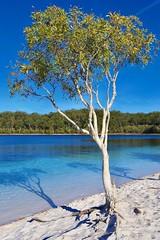 Lake MacKenzie (ISO 69) Tags: