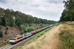 2019.08.16_12530_Assel_RFO 1831+1829 (rcbrug) Tags: assel heide heather rfo trein ketelwagens ketelwagentrein 1831 1829 1600 goederentrein goederenvervoer