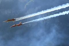 IMG_3716 (uhebeisen) Tags: airplanes zigermeet2019