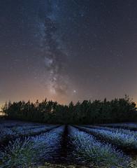_DSC5946-52 (fjsmalaga) Tags: nocturna vl noche estrellas lavanda ronda paisaje d750 ngc