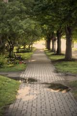 Path (DJ Wolfman) Tags: art path sidewalk mackinacisland grass trees green sunlight michigan michiganfavorites micro43 olympus olympusomd em1markii zuiko
