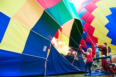 The Strangest Animal of All (Chancy Rendezvous) Tags: davelawler blurgasm chancyrendezvous morning balloons ma colorful aircraft balloon hotairballoon inflated inflating