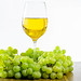 A glass of white wine surrounded by bunches of green grapes