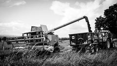 Stainton . (wayman2011) Tags: 7artisans25mmf18 colinhart fujifilmxe2s lightroom5 wayman2011 bw mono rural farming harvest tractors pennines dales teesdale stainton countydurham uk