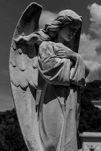 Genova, Cimitero di Pra' Palmaro