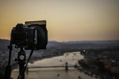 Budapest sight sunset (gergely.t.springer) Tags: d3500 nikon budapest sunset sight chainbridge duna donau hungary magyarország citadella bokeh orange