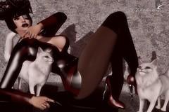 I AM A PUSSY CAT (Rachel Swallows Inworld Elenamicheals Core) Tags: alaskametro belleza bento fashion fetishfair freya hec heels hourglass kinky latex maitreya pkc secondlife wiccasoriginals