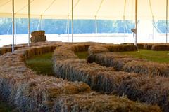 Straw Bale Theater (Bracus Triticum) Tags: straw bale theater fort vermilion アルバータ州 alberta canada カナダ 8月 八月 葉月 hachigatsu hazuki leafmonth 2019 reiwa summer august
