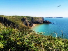 Hike along the coast to David's Head (Stéphanie Bourgeois) Tags: wales pembrokeshire chuchdoor beach sea life shells seaweed anemones rock sand ocean coast nature landscape explore holiday summer break hike discovery