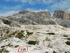 Altopiano delle Pale - 13 (antonella galardi) Tags: trentino trento 2019 pale altopiano sanmartinodicastrozza escursione escursionismo trekking hiking dolomiti dolomites sentiero 756 gares