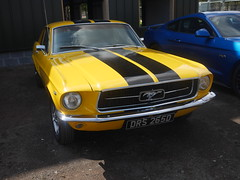 1967 Ford Mustang DRS 265D (Sig-Classics) Tags: 1967 ford mustang drs 265d