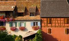 Hunawihr (Haut-Rhin, Alsace, Fr) – Couleurs d'Alsace (caminanteK) Tags: hunawihr alsace basrhin plusbeauvillagedefrance couleursdalsace fenêtres