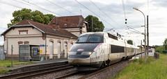 TGV R 501 Donchery (MJ les photos) Tags: donchery ardennes france tgv reseau 500 501 sncf 204 204000 tgvr