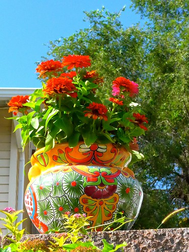 Flowers in a beautifully decorated pot, Omaha