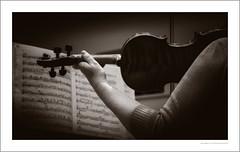 The tyranny of practice (G. Postlethwaite esq.) Tags: unlimitedphotos monochrome music photoborder toned violin violinist tritone