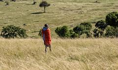 MAASAI TRIBE: A PROUD PEOPLE (John C. Bruckman @ Innereye Photography) Tags: maasaitribe kenya eastafrica tanzania greatriftvalley population savannah