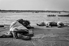 The sleeper IV (karmajigme) Tags: sleeper man animal human dog humanity street streetphotography ganga varanasi uttarpradesh india travel monochrome noiretblanc blackandwhite bw nikon