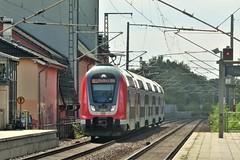 445 009 Lichterfelde Ost 14-08-2019 (vorstadtjazz) Tags: berlin lichterfelde eisenbahn bahn bahnhof berlinlichterfelde lichterfeldeost steglitz