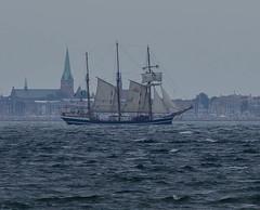 German schooner Thor Heyerdahl with Elsinore in the background (frankmh) Tags: helsingør elsinore ship tallship thorheyerdahl schooner öresund denmark