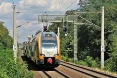 445 103 Lichterfelde Ost 14-08-2019 (vorstadtjazz) Tags: berlin lichterfelde eisenbahn bahn bahnhof berlinlichterfelde lichterfeldeost steglitz