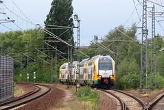 445 100 Spandau 15-08-2019 (vorstadtjazz) Tags: berlin spandau berlinspandau eisenbahn bahnhof bahn