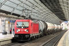 187 142 Spandau 15-08-2019 (vorstadtjazz) Tags: berlin spandau berlinspandau eisenbahn bahnhof bahn