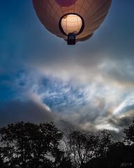 (Mr. Tailwagger) Tags: leica m10 tailwagger elmarit 28mm preasph v3 balloon hudson ma