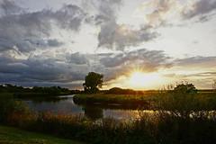 DSC03790 (Argstatter) Tags: landschaft landscape blockland bremen natur stimmungen sonnenuntergang