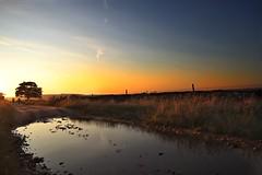 Mountain bikers at sunset. (Darren Speak) Tags: thisisforyou