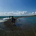 Panorama of Point Pelee's Tip Point