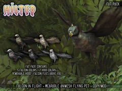 HILTED - Falcon In Flight (HILTED) Tags: hilted second life animes pet wearable animal falcon bird enchantment