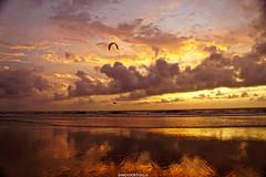 DSC09308 (ZANDVOORTfoto.nl) Tags: sunset fire sky skies netherland dutch zandvoort aan zee noordzee cloud clouds wolken sun sunsets ondergaande zon zonnig