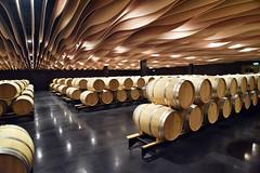 l'art des chais dans le Haut Medoc (fred9210) Tags: wine bordeaux hautmedoc chais vin fut barique graphisme flots taste red rouge saint julien aquitaine french architecture