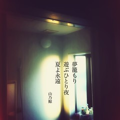 夢籠もり遊ぶひとり夜 夏よ永遠[山乃鯨]#haiku #photohaiku #poetry #summer #micropoetry #夏 #フォト俳句 #詩歌 #写真俳句 #俳句 #snapseed #phonto #jhaiku #3lines #poem #shortpoem #verse #actuallyautistic #mpy #vss #autismawareness #autismacceptance #autism #autismspectrumdisorder #asd (Atsushi Boulder) Tags: summer poetry haiku 夏 photohaiku micropoetry poem asd autism verse vss 俳句 autismawareness 3lines mpy autismspectrumdisorder 詩歌 shortpoem autismacceptance snapseed phonto actuallyautistic jhaiku 写真俳句 フォト俳句 japan photography photo literature 575 季語 五七五 japanese