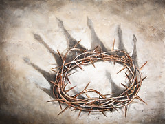 The King's Crown (Aaron Spong Fine Art) Tags: crown thorns jesus king kings lord bible christianity