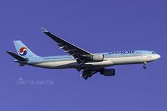 HL8001 A333 KOREAN AIR YBBN (Sierra Delta Aviation) Tags: korean air airbus a333 brisbane airport ybbn hl8001