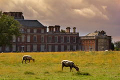 The West Wing (alasdair massie) Tags: nationaltrust wimpolehall park building architecture listed royston england unitedkingdom