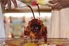 Balarama Purnima 2019 - ISKCON London Radha Krishna Temple Soho Street - 15/08/2019 - IMG_4894 (DavidC Photography 2) Tags: street uk summer england london festival temple for hare day 10 soho 15 august lord international krishna krsna society thursday 15th consciousness appearance mandir radha purnima radhakrishna jayanti 2019 iskcon balarama iskconlondon internationalsocietyforkrishnaconsciousness