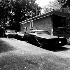 La collection privée... (woltarise) Tags: maison montréal rosemontpetitepatrie streetwise iphone7 ambiance collection protections bâches automobiles voiture