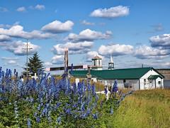 Tsigeetchich Church (oneofmanybills) Tags: church tsiigehthich tsigeetchich flowers blue clouds sky crosses cross northwestterritories canada dempsterhighway dempster mackenzieriver olympus micro43