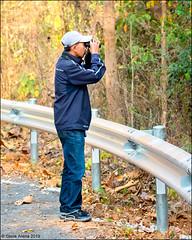 Na at Mae Ping National Park (Steve Arena) Tags: maepingnationalpark lamphun thailand thailandbirding2019 nikon bird birds birding lidistrict