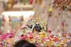 Balarama Purnima 2019 - ISKCON London Radha Krishna Temple Soho Street - 15/08/2019 - IMG_4928 (DavidC Photography 2) Tags: 10 soho street radhakrishna radha krishna temple hare krsna mandir london england uk iskcon iskconlondon internationalsocietyforkrishnaconsciousness international society for consciousness summer thursday 15 15th august 2019 lord balarama purnima jayanti appearance day festival