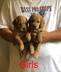 Lucy Jo Girls 8-17